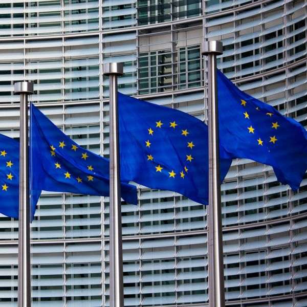 Elezioni europee, in Italia affluenza definitiva 56,1%